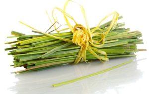 uses-of-lemongrass-oil